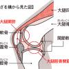 膝の痛み、たけし接骨院では何をしてくれる??