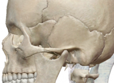 顎関節症の患者様が来院。関節円板がスムーズに動かない事が直接の原因。