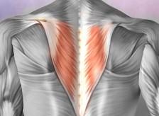 背中の痛みを訴えられている患者様が来院されました。