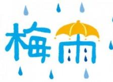 梅雨がきましたね( ノД`)