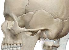 長年の悩んでいた顎関節症であっても12回の治療で終了。